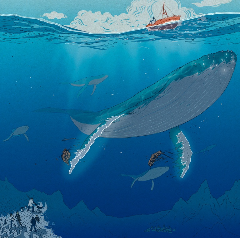 nicholas castell whale.jpg