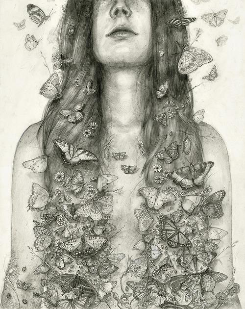 Butterflies by DT Moore.jpg